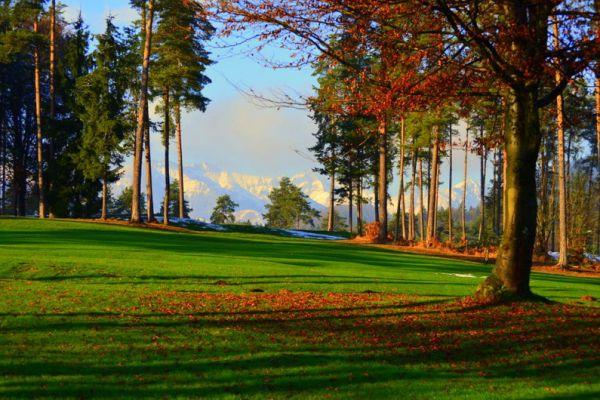 golf_arboretum_30DFAD7EFE-F929-9FB2-2F54-2C9806ED12D3.jpg