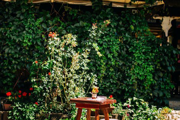 kraljev_hrib_kamniska_bistrica_restaurant_paintball_camping_hostel_rooms_00061ACF338A-2A8B-6B8F-6C28-BE831E38C357.jpg
