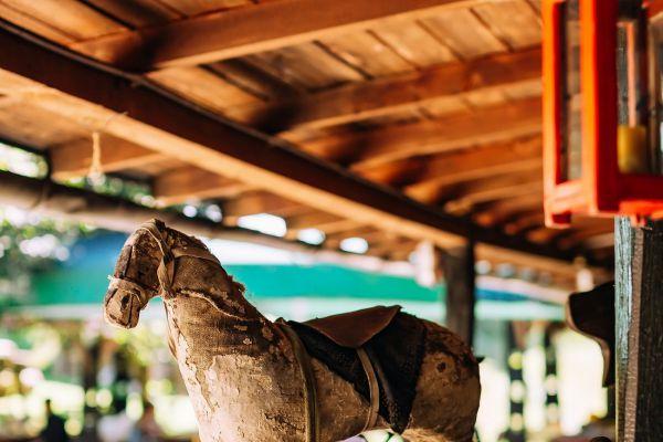 kraljev_hrib_kamniska_bistrica_restaurant_paintball_camping_hostel_rooms_0007AE024F2A-EE94-B10B-C957-D02CC7E25B64.jpg