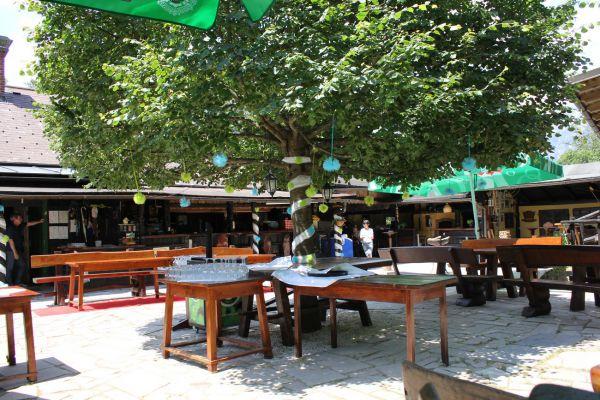 kraljev_hrib_kamniska_bistrica_restaurant_paintball_camping_hostel_rooms_00486E6A1601-B5D7-42C2-AB89-BA103083F973.jpg